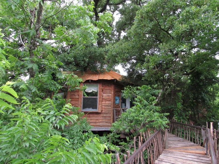 Book a cozy treehouse stay at Savannah's Meadow
