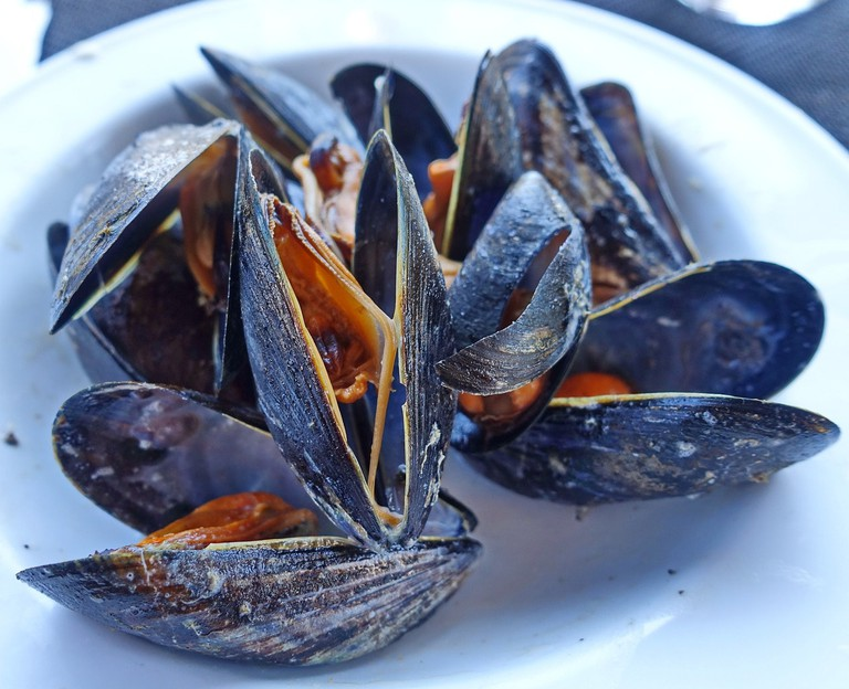 mussels-2796911_1280