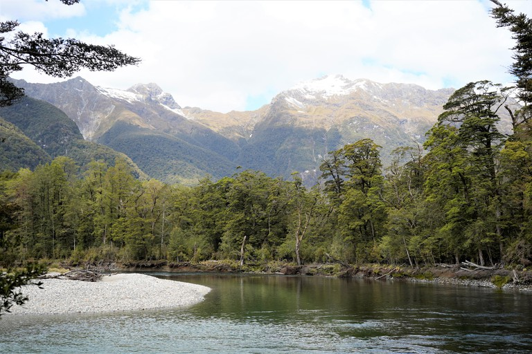 Lake surrounded by trees, mountains in the background. Milford Track, New Zealand South Island