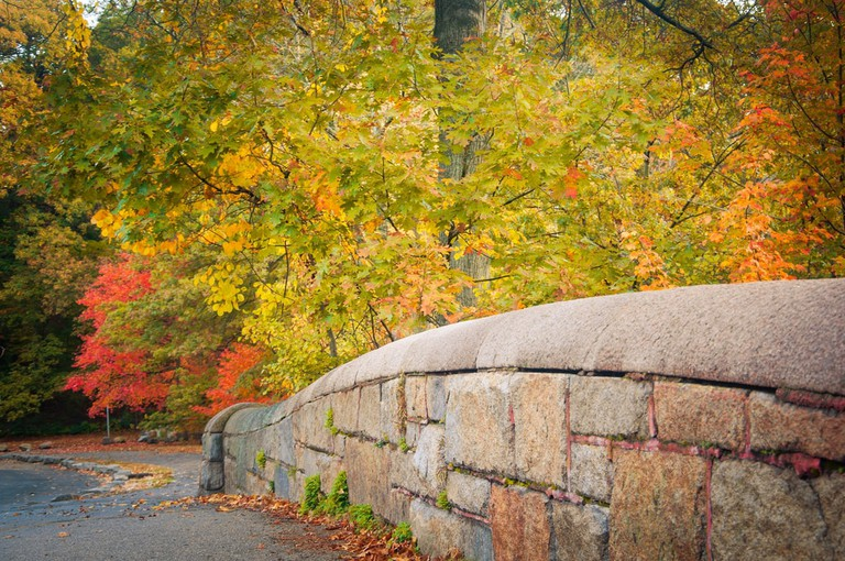 franklin park boston cycling