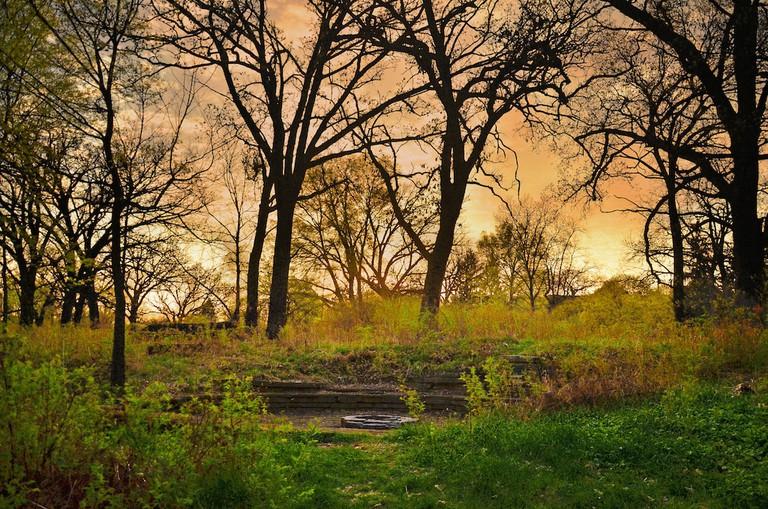 University of Wisconsin – Madison Arboretum | © Richard Hurd/flickr