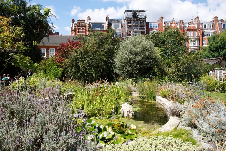 The Chelsea Physic Garden is the oldest botanic garden in London