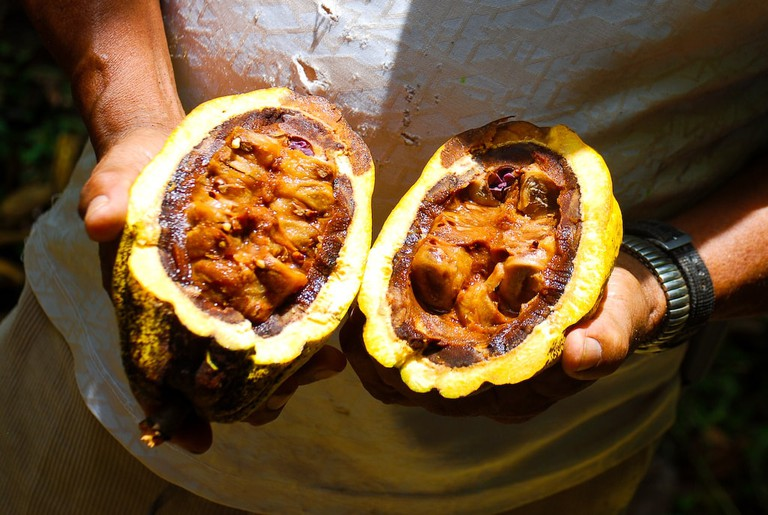 Chocoart in Costa Rica