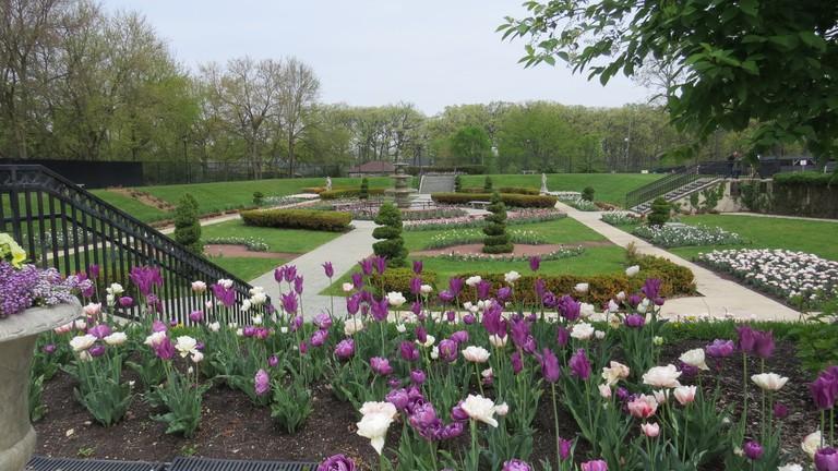 Spring in Phillips Park Sunken Garden