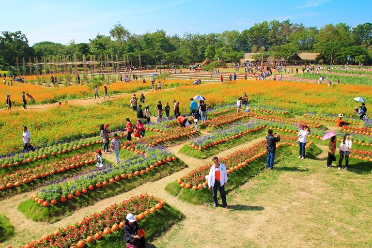 Jim Thompson Farm, Nakhon Ratchasima
