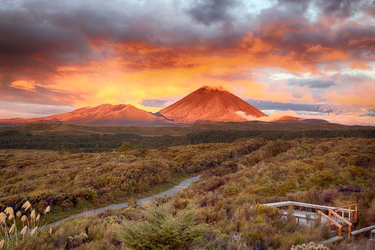 Mt Ngauruho, New Zealand
