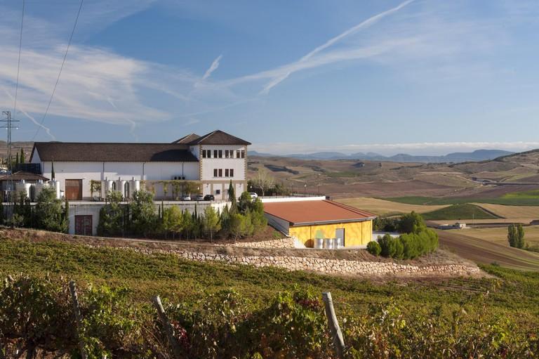 Bodega Nekeas, Navarra
