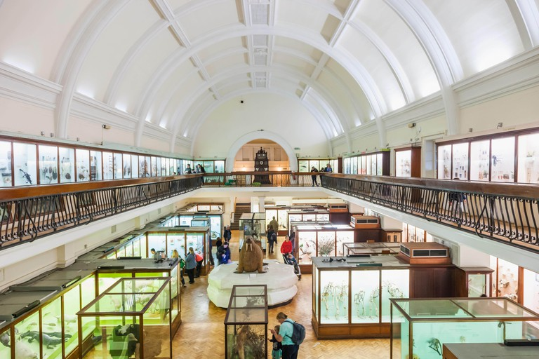 The Horniman Museum is full of family-friendly exhibits