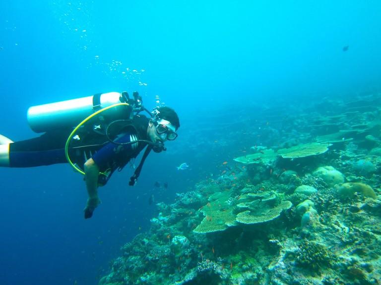 langkawi dive schools