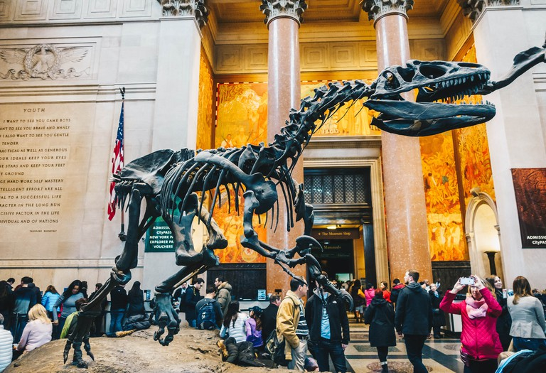 Interior of The American Museum of Natural History (abbreviated as AMNH), located on the Upper West Side of Manhattan, is one of the largest museums in the world.