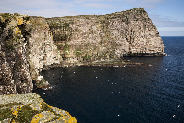 Isle Of Noss, Shetland