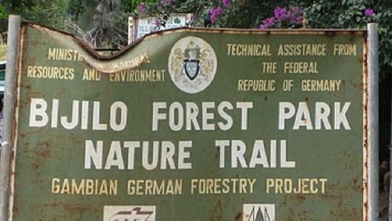 Bijilo forest part
