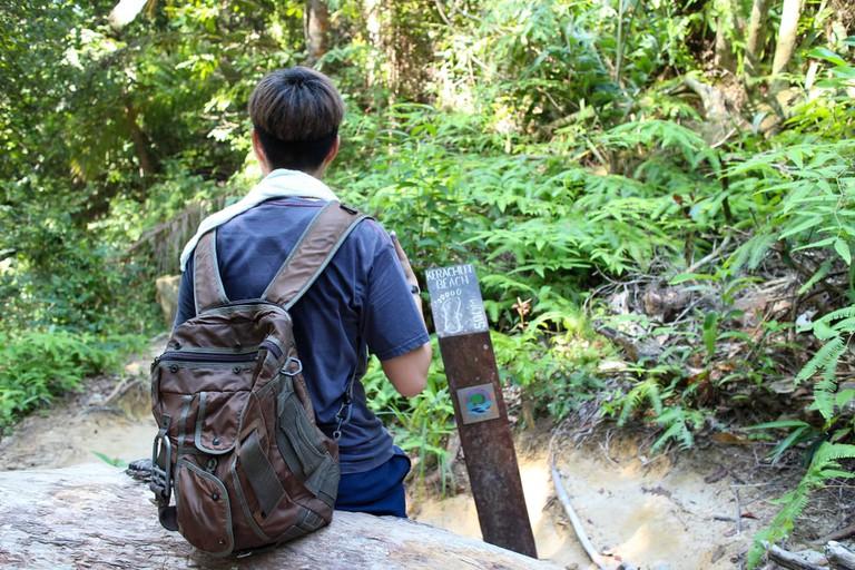 Hiking At Teluk Bahang National Park, Penang, Malaysia.