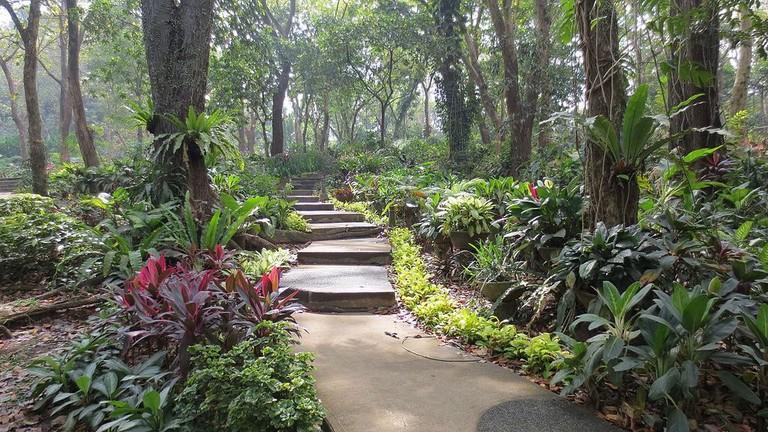 Garden Area of La Mesa Ecopark