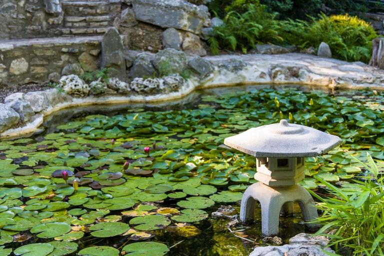Zilker Metropolitan Park has its own botanical garden