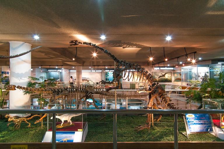 Paleozoological Museum. Beijing. China