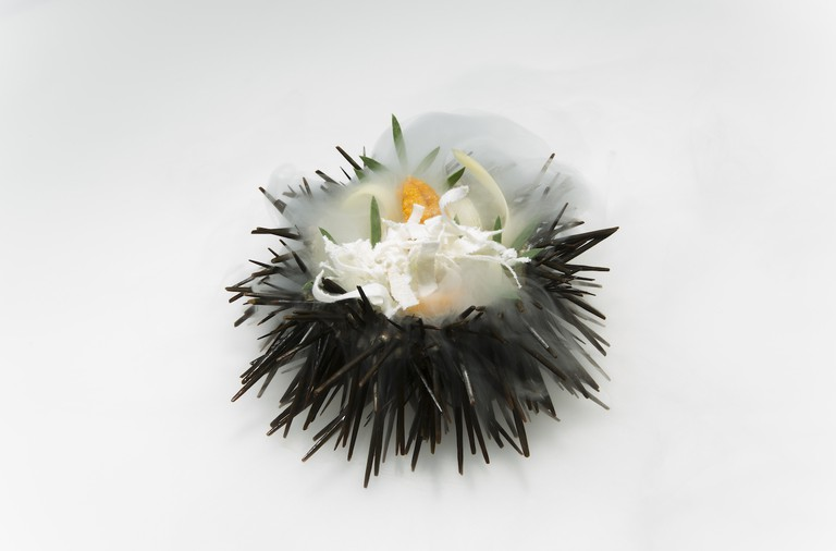 Urchin, carrot and apple Oscillate Wildly © Oscillate Wildly