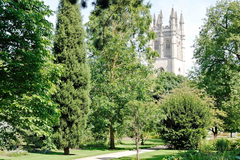 Magdalen College Tower, Viewed from Oxford Botanic Gardens, Oxford, England