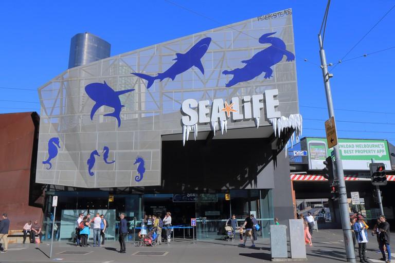 People visit Sea Life Aquarium in central Melbourne Australia