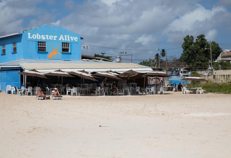 Lobster Alive restaurant by the beach in Bridgetown, Barbados