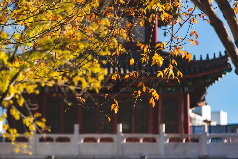 Tianjin People's Park