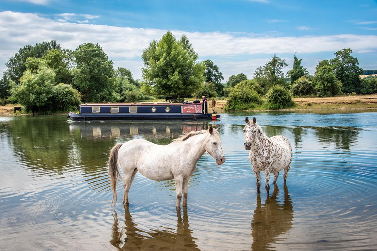 Cooling off at Port Meadow, Oxford, UK.