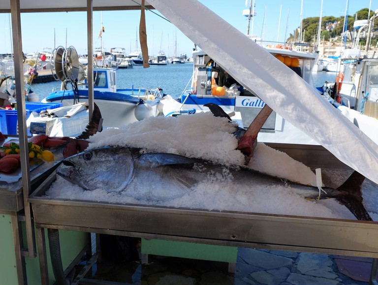Tuna on display on ice at a fishmonger's stall in sanary-sur-Mer, France