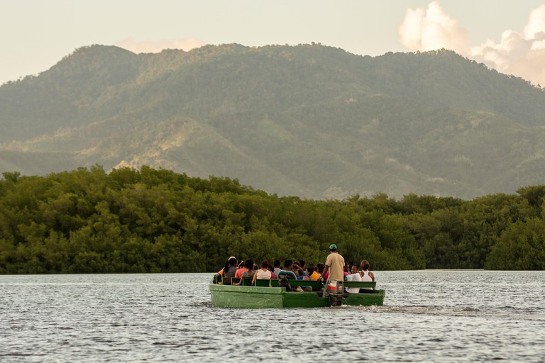 A guided boat tour through the Caroni Swamp, Trinidad