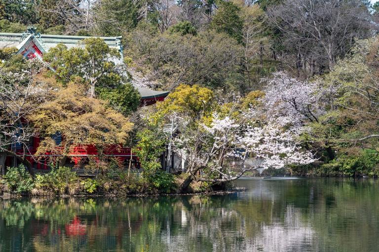Inokashira Benzaiten, Inokashira Park, Tokyo