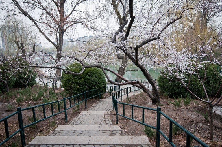 Zizhuyuan Park is also known as the Purple Bamboo Garden