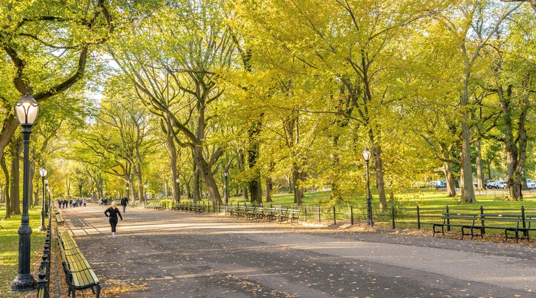 People walking in Central Park New York
