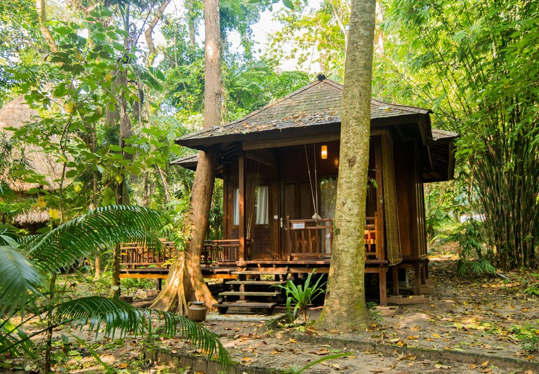 A wooden cottage in the tropical forest surrounded by trees at Barefoot at Havelock
