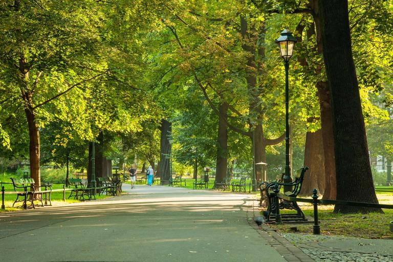 Summer morning in Planty Park, Krakow, Poland.