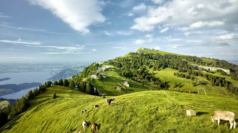 Views across Mount Rigi