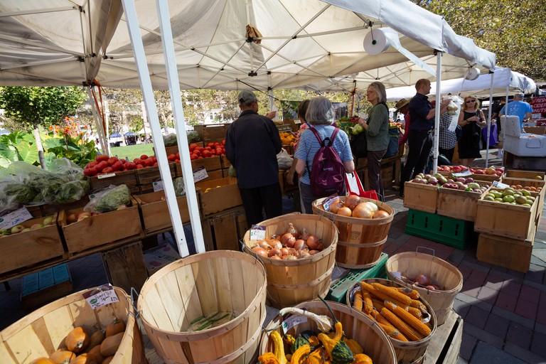 Farmers Market on Copley Square, Back Bay, Boston.