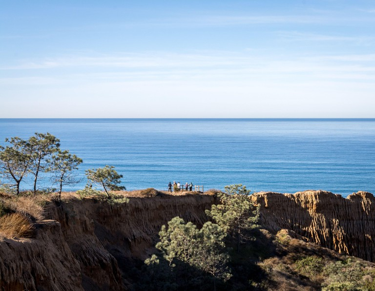 Magnificent view of Torrey Pines State Reserve - Seashore cliff in San Diego, California, United States of America. Panorama. Pacific Ocean. Horizon.