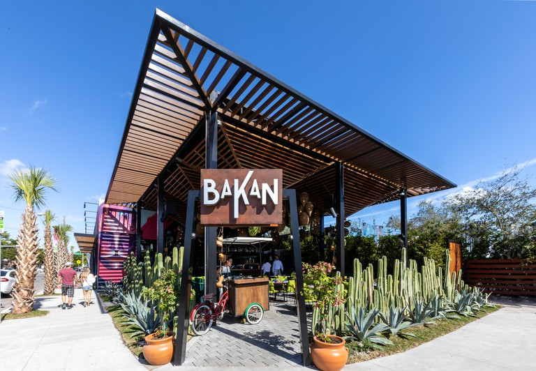 BAKAN is surrounded by cacti
