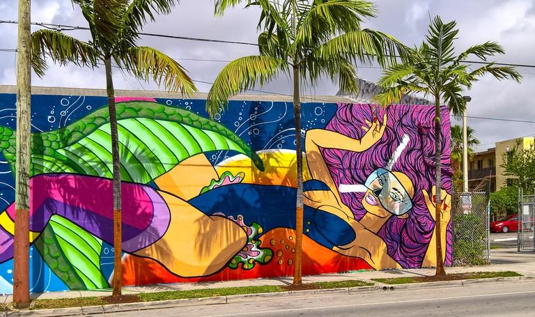 Graffiti Wall Decoration. Wynwood Art District.