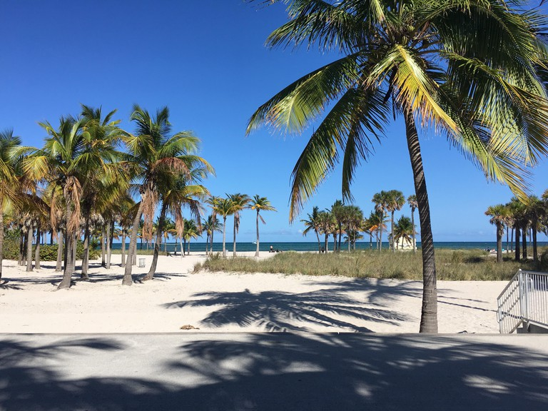 One of the best ways to explore Key Biscayne is by bike