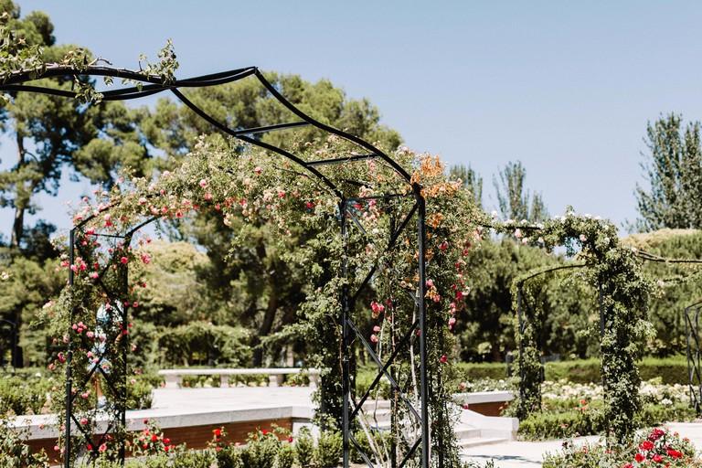 Rosaleda rose garden inside Parque del Buen Retiro Park in Madrid, Spain