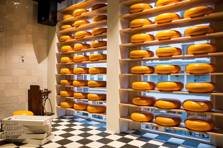 Henri Willig Cheese Tasting Tour with Wine