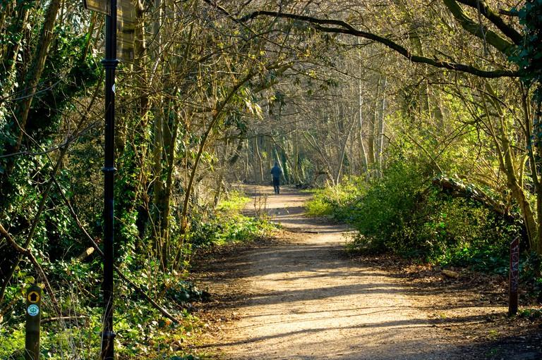 View of Parkland Walk