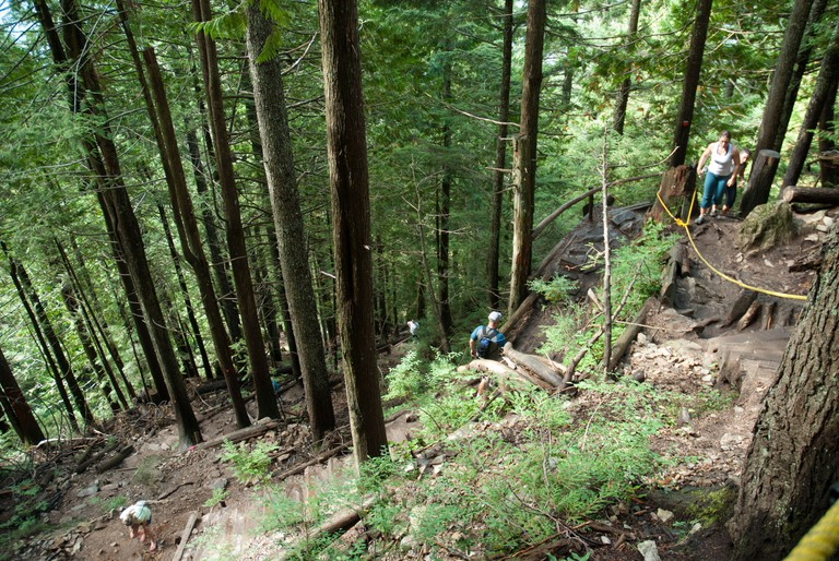 "A view of the popular ""Grouse Grind"" trail up Grouse Mountain, Vancouver. Climb the Grouse Grind via 2,830 stair"