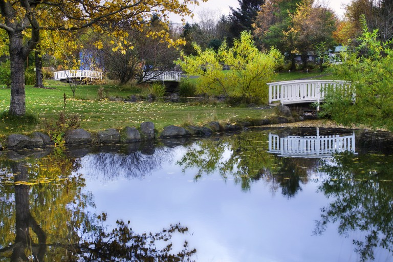 Reykjavik Botanical Gardens are a peaceful escape from the streets of the city