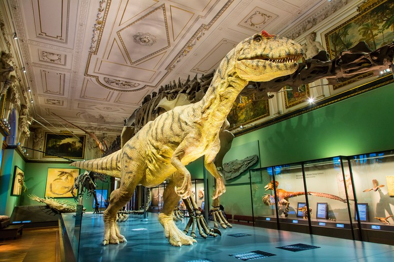 Austria, Vienna, Natural History Museum
