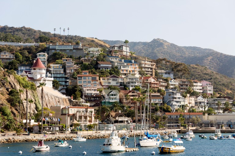 Avalon harbour on the island of Catalina, off the Californian coast.