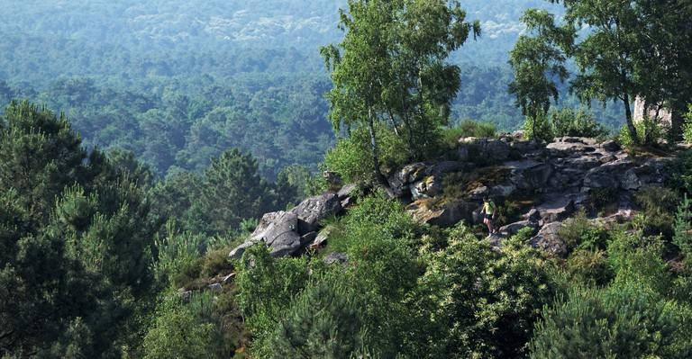 hiking in Fontainebleau forest