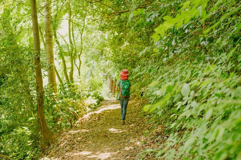 Girl hiking the mountain
