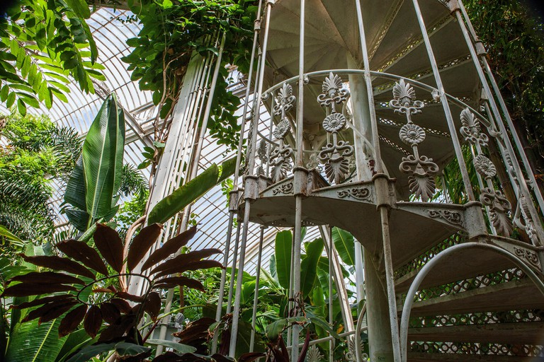 Kew Gardens. Palm House, Large greenhouse, interior view, tropical plants, metal spiral staircase