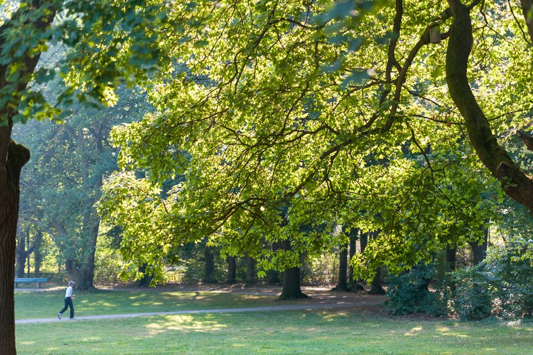 Runner in the park - Luitpoldpark, Munich, Bavaria. Image shot 09/2015. Exact date unknown.